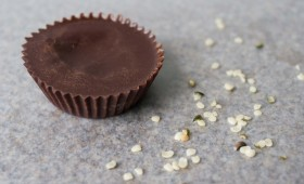 Raw Hemp Sunflower Seed Butter Cups (vgn)
